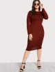 Clothes/footwear details Long Sleeve Basic Dress (Accessories)