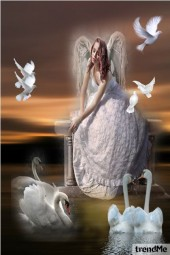 Anđeo i golubčići
