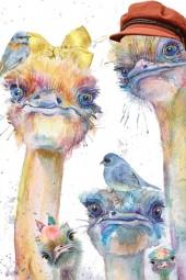 Ostrich Family Selfie
