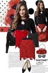 Pantone Poppy Red and Black