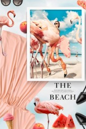 Beaches where you Can Mingle with Flamingos and