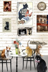 Kate's Café des Chats