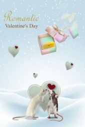 Happy Valentine's Day to everyone ♥