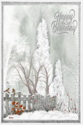 A Special Winter Birthday !!