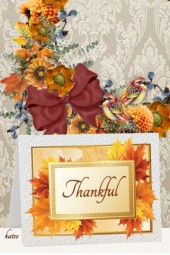 Truly and Totally Thankful !!