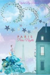 Paris Nights-Art