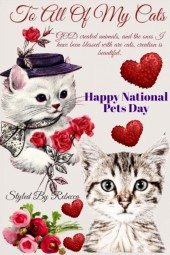 To All Of My Cats