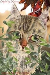 Bird Watching-Cat Art