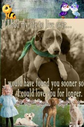 LOVE MY DOG HUNTER