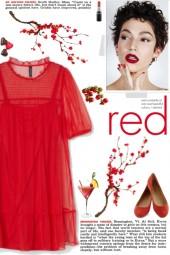 How to wear a Semi-Sheer Lace Mini Dress!