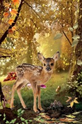 baby fawn in fall leaves