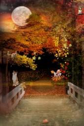 The  colourful season