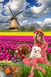 Rural idyll in spring