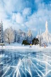 Wilderness in winter