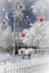 Snowfall on St. Valentine's