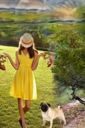 A sunny yellow dress