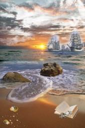 beach dream....