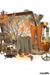 Ready, steady, now, autumn
