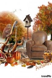Freedom autumn