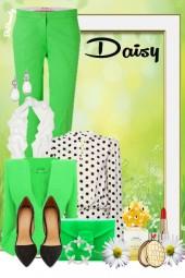 nr 729 - Daisy