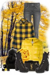 nr 2208 - Autumn walk