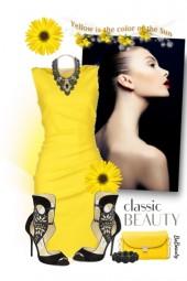 nr 2649 - Yellow & black