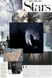 Wolf Moon 28-January-2021