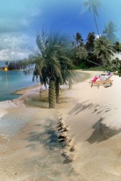 BEACHE DAY