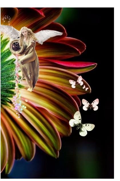 Color The Petals- Fashion set