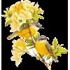 Plants Beige Plants Beige - Растения -