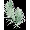 079 - Растения -
