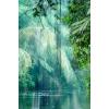 105 - Natur -