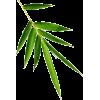 8367 - Plantas -