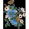 94675 - Plantas -