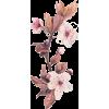 9754 - Растения -