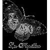 9e57e56ab497637 - Uncategorized -