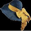 Accessories Blue - Hat -