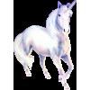 Unicorn Jednorog - Životinje -
