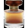 Amber Elixir - Profumi -