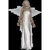 Angel - モデル -