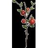 Apple - Biljke -
