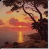 Art Beach - Priroda -