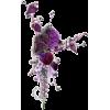 Art - Plants -