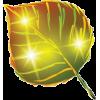 Autum leaf - Ilustracije -