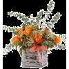 Autumn Flowers - Biljke -