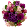 Autumn Flowers - Plantas -