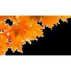 Autumn Leaves - Biljke -