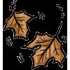 Autumn Leaves - Uncategorized -