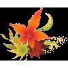 Autumn - 植物 -