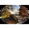Autumn - Nature -